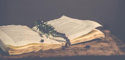 """""""De Les Penelles a Castellserà"""" llibres d'aquells que en queden pocs"""